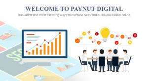 Paynut digital reviews