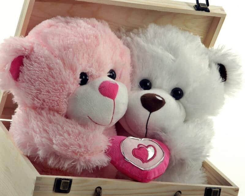 happy teddy day cute images